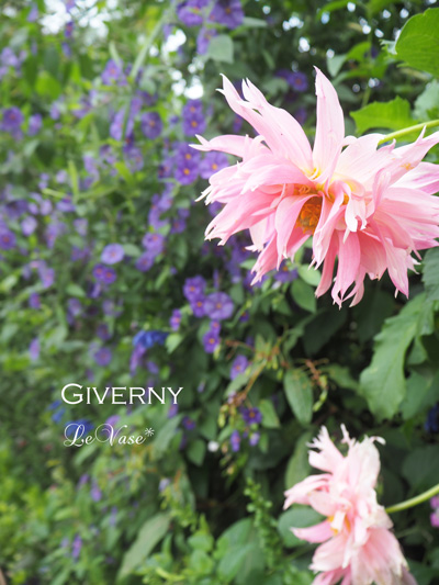 モネのGivernyへ_e0158653_196412.jpg