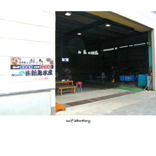 新島水産@由良_c0156468_19362287.jpg