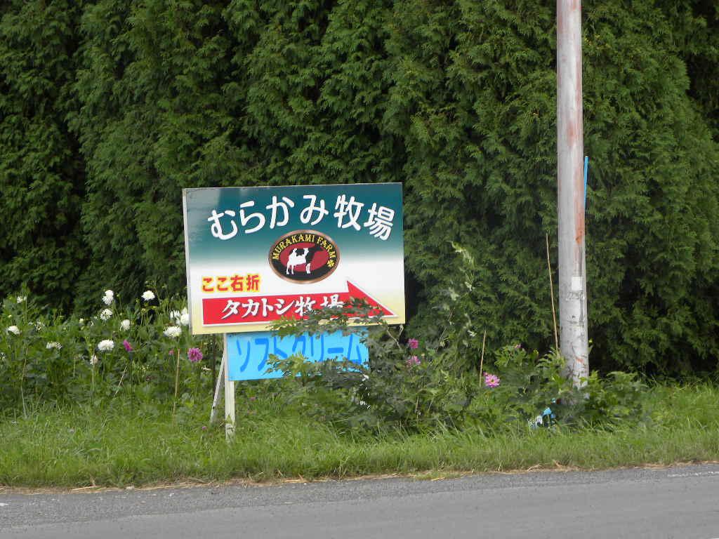 北海道報告・・・③(千歳バーベキュー・アイス)_c0162773_16121248.jpg