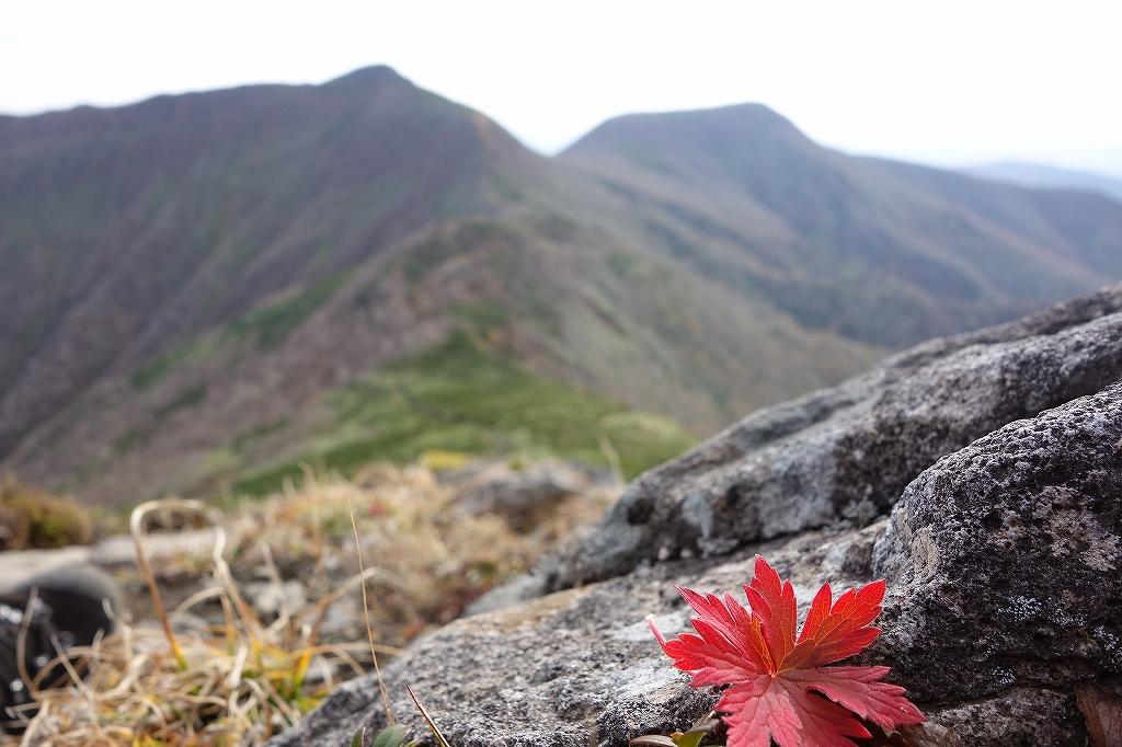 ホロホロ山と徳舜瞥山、10月5日-その1-_f0138096_11412623.jpg