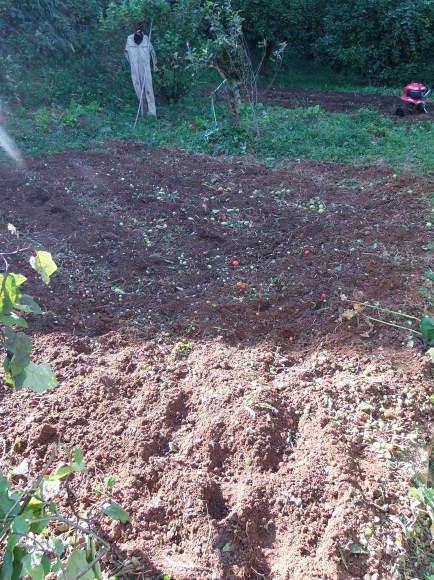 秋、冬、春の「畑の準備」_a0125419_17042752.jpg