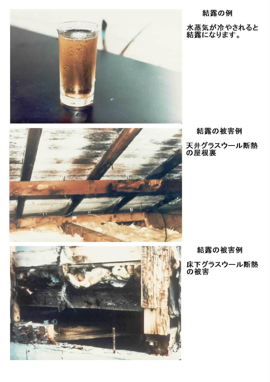 結露                                         2014.10/07(火)_d0195024_10301944.jpg