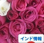 c0339249_01261318.jpg