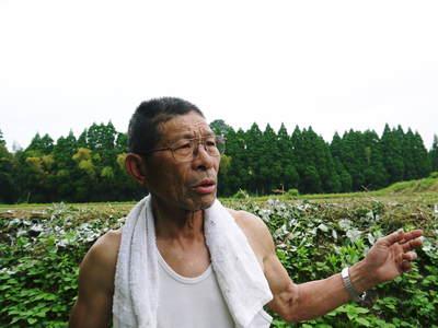 菊池水源里山ニンジン 無農薬・無化学肥料で育てたニンジンを今年も11月下旬より販売します!!_a0254656_18223890.jpg