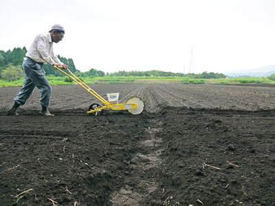 菊池水源里山ニンジン 無農薬・無化学肥料で育てたニンジンを今年も11月下旬より販売します!!_a0254656_1837996.jpg