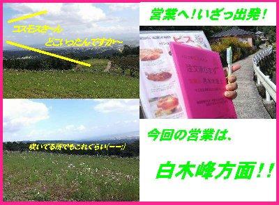 b0189066_17271834.jpg