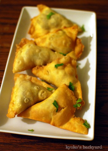 インド料理ナイト_b0253205_04132008.jpg