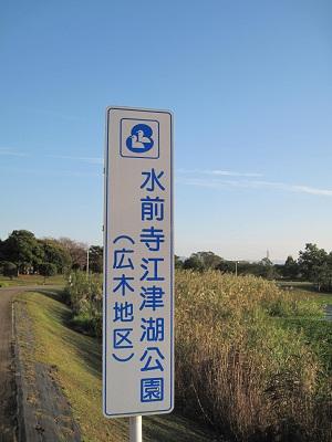 水前寺江津湖公園_b0228113_17533223.jpg