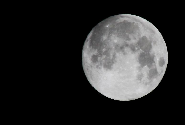 月食_a0071514_239214.jpg