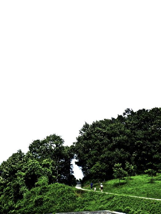 豊島❸_f0315034_16312410.jpg