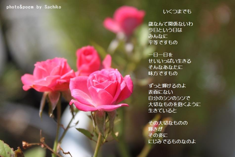 f0351844_10074940.jpg