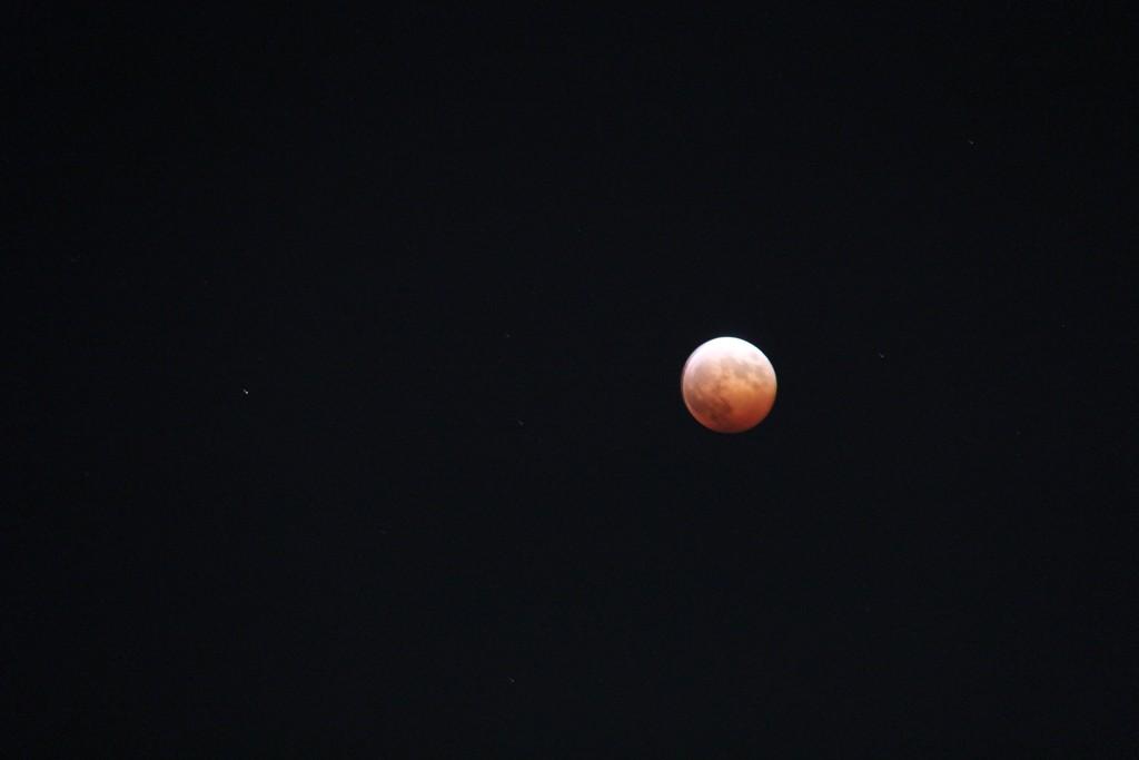 皆既月食をなんとかパチリ_c0011649_22444722.jpg