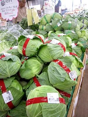 秋冬作野菜続々出荷_c0141652_1295442.jpg