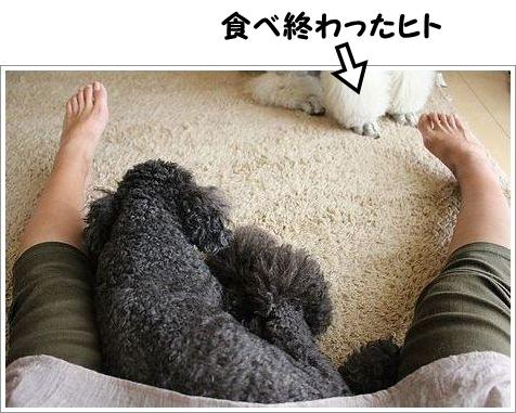 b0111376_1392388.jpg