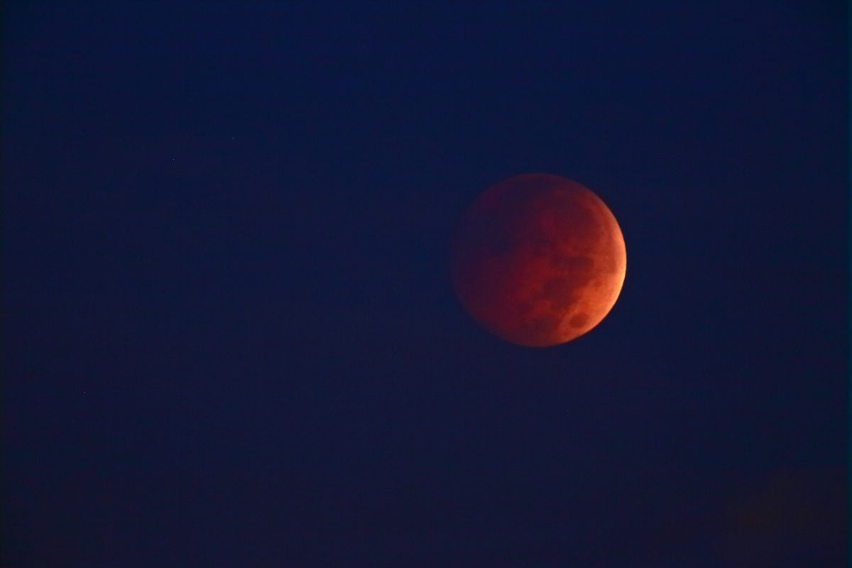 Blood Moon in NY 2014_a0274805_00261238.jpg