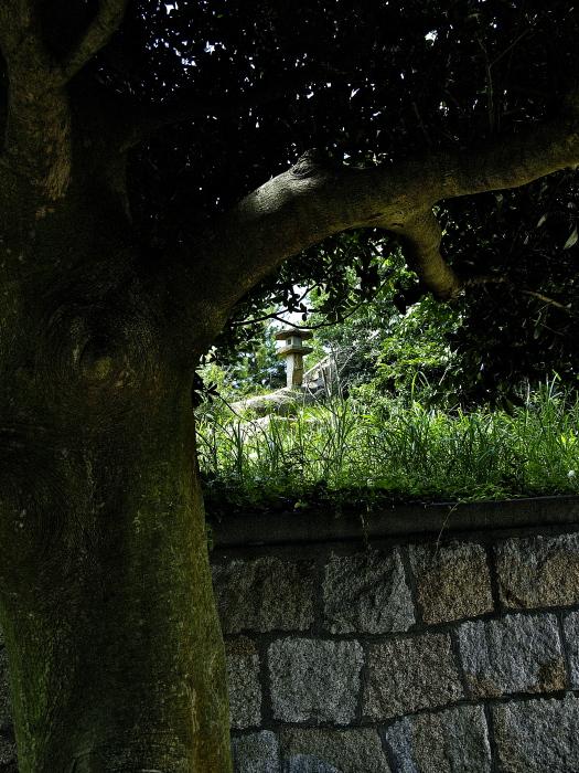 犬島❸_f0315034_00311301.jpg