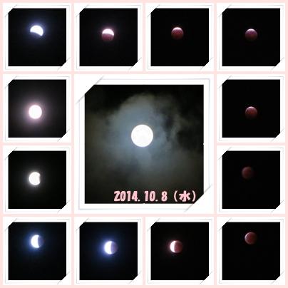 b0254145_035295.jpg