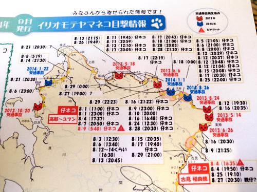2014年9月『イリオモテヤマネコを手なずけよの旅』【2】_e0071652_1224492.jpg