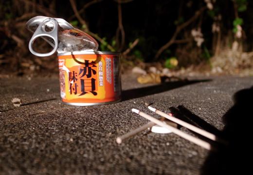 2014年9月『イリオモテヤマネコを手なずけよの旅』【2】_e0071652_122499.jpg