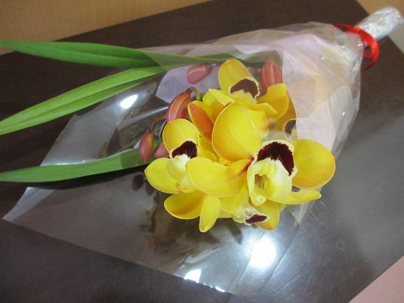 お花ありがとう!_b0187479_1414280.jpg