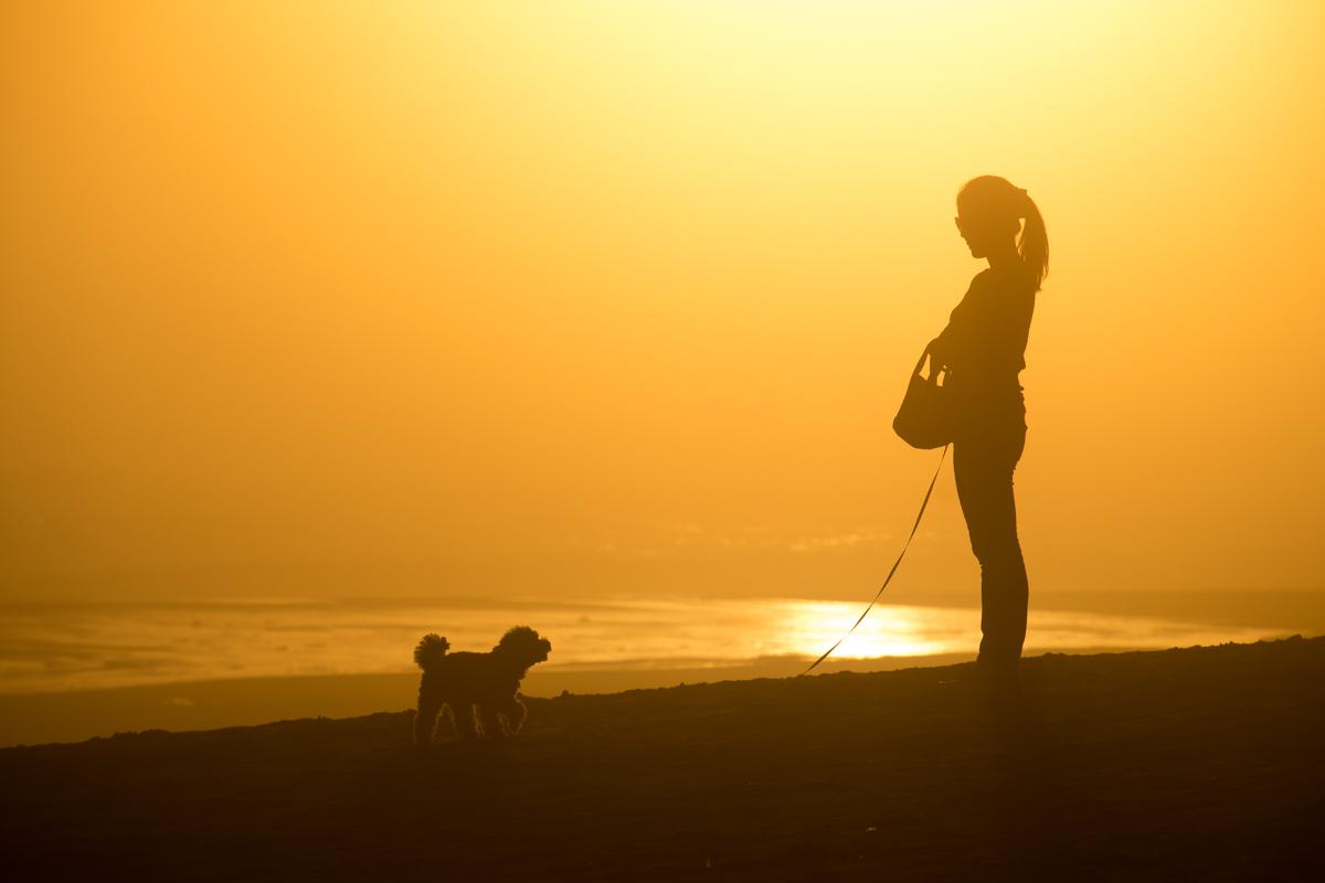 woman & dog at sunset_e0139093_653644.jpg