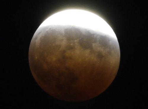 皆既月食_e0086798_6323198.jpg