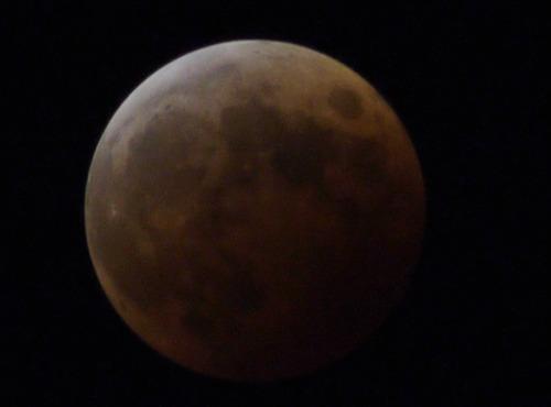 皆既月食_e0086798_6324971.jpg