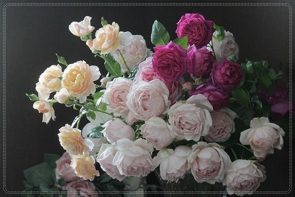 c0325701_00480126.jpg