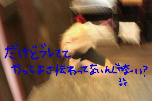 b0130018_9494630.jpg