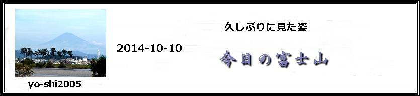 e0033229_1744532.jpg
