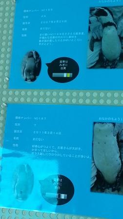 f0228680_9243325.jpg