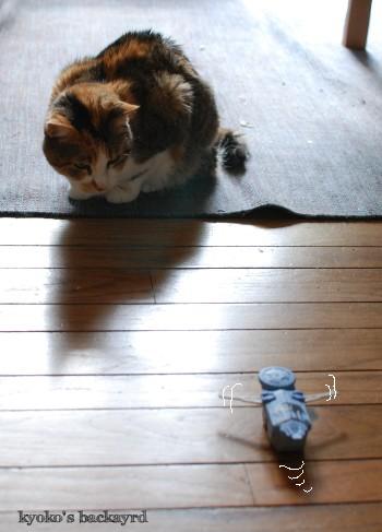 マクドナルドのおまけで遊ぶ猫_b0253205_04243147.jpg