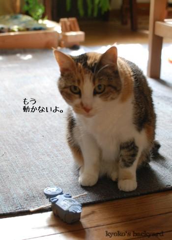 マクドナルドのおまけで遊ぶ猫_b0253205_04253488.jpg