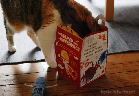 マクドナルドのおまけで遊ぶ猫_b0253205_04260351.jpg