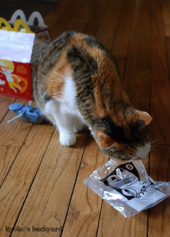 マクドナルドのおまけで遊ぶ猫_b0253205_04264000.jpg