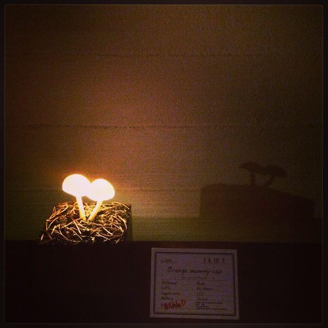 高野 幸雄さんの個展に行ってきました。_d0014014_1684436.jpg