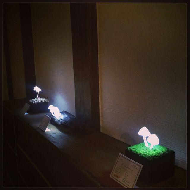 高野 幸雄さんの個展に行ってきました。_d0014014_1685460.jpg