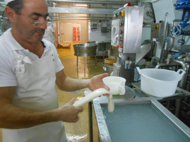 水牛乳チーズの工房~秋~_b0305039_4595235.jpg