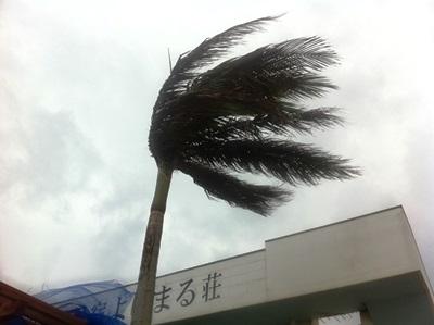 10月11日 すごい風が吹いています!_b0158746_1655047.jpg