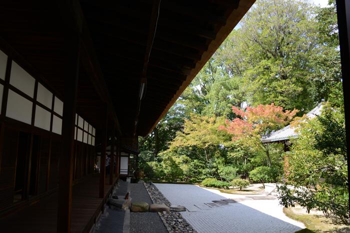 京都おすすめの観光スポット。堂内撮影OK!建仁寺_e0171573_2021913.jpg