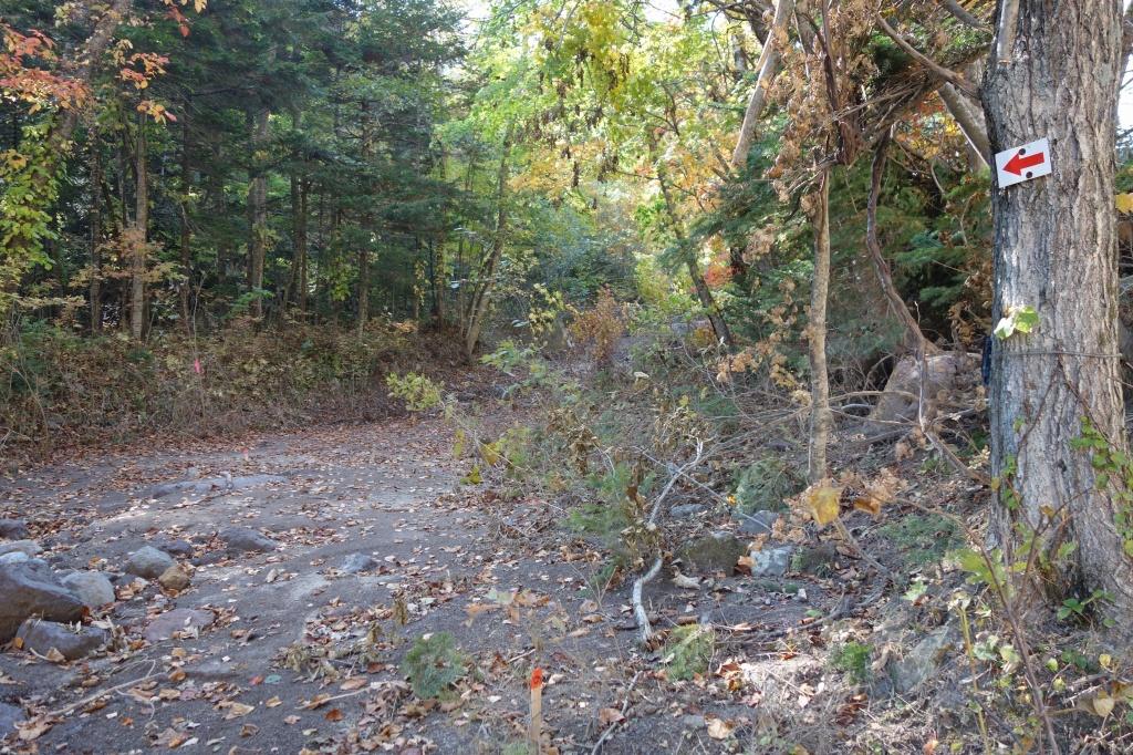 恵庭岳登山口の現状、10月9日_f0138096_15301131.jpg