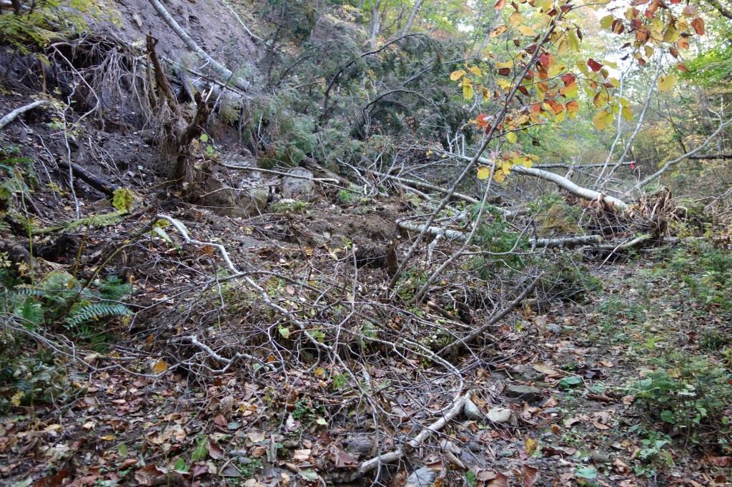 恵庭岳登山口の現状、10月9日_f0138096_15301810.jpg