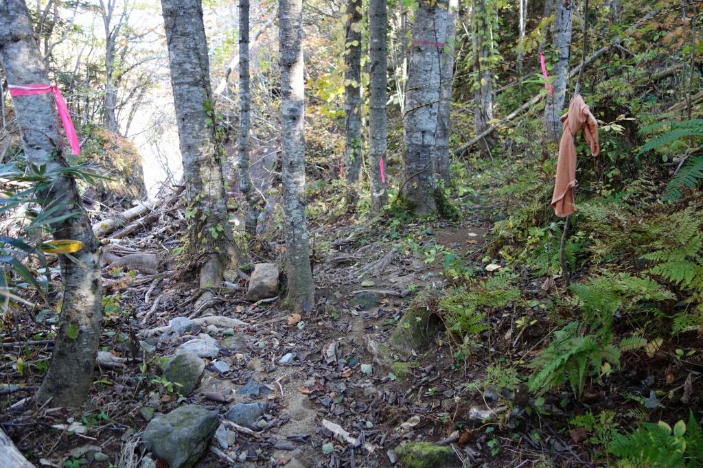恵庭岳登山口の現状、10月9日_f0138096_15305937.jpg