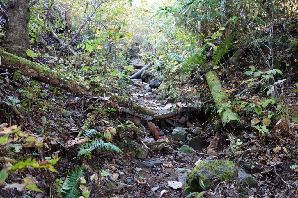 恵庭岳登山口の現状、10月9日_f0138096_1531760.jpg