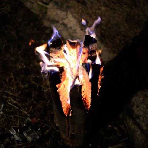 日本焚き火学会例会_f0099102_12234218.jpg
