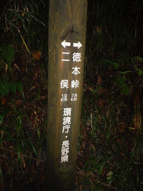 b0326303_00120496.jpg