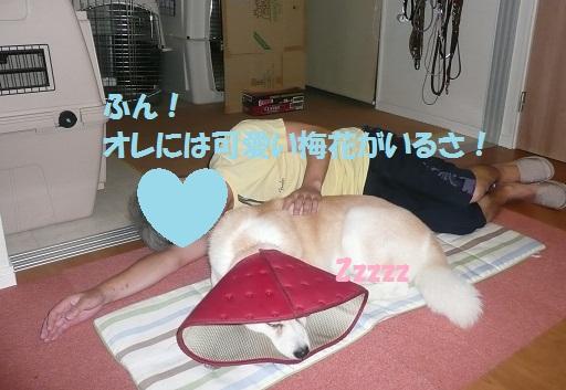 f0121712_6325651.jpg