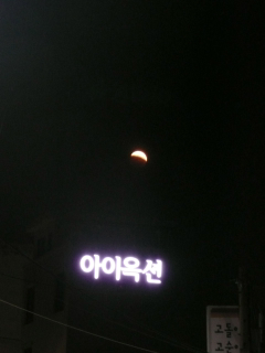 東大門の夜_b0325640_11184859.jpg