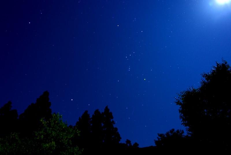 星降る森のキャンプ_c0063348_21475916.jpg