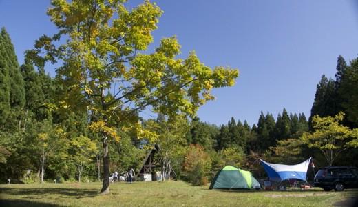 星降る森のキャンプ_c0063348_21481798.jpg
